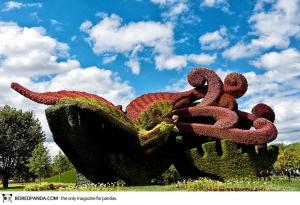 plant-sculptures-mosaicultures-internationales-de-montreal-13